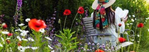 Concevoir un jardin...