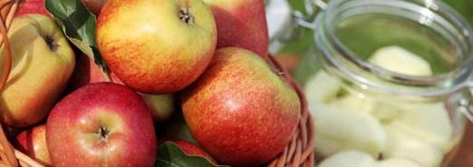 Conserver les pommes et les poires
