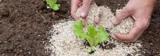 jardiner-responsable